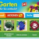 Pflanzen online bestellen – Baldur Garten