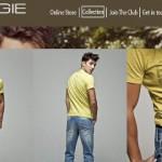 Energie Schweiz online Shop
