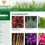 Pflanzen online Shop – Pflanzenverkauf