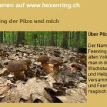 Pilze Schweiz online Shop
